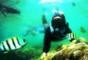Wisata Snorkling Slulup Adventure – Pantai Slili